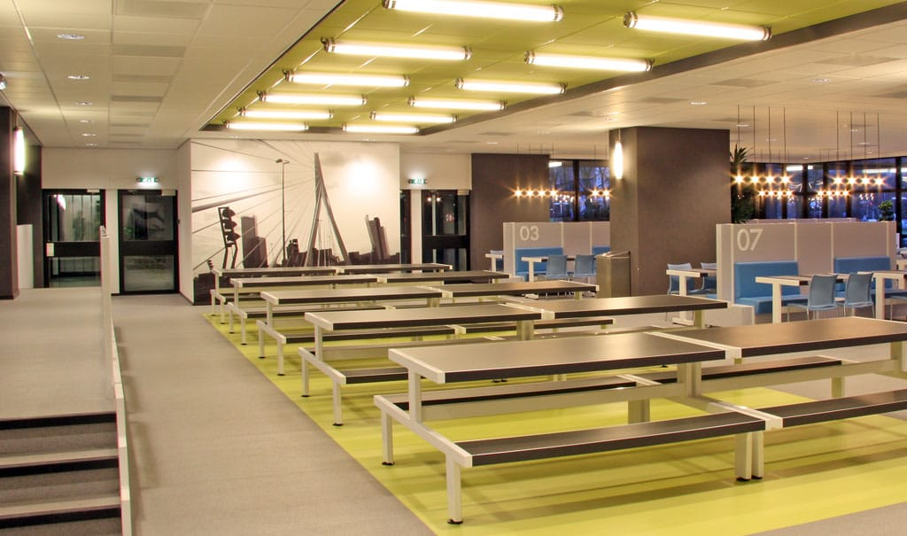 Программы магистратуры Erasmus University Rotterdam