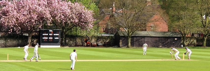 Cricket-2014