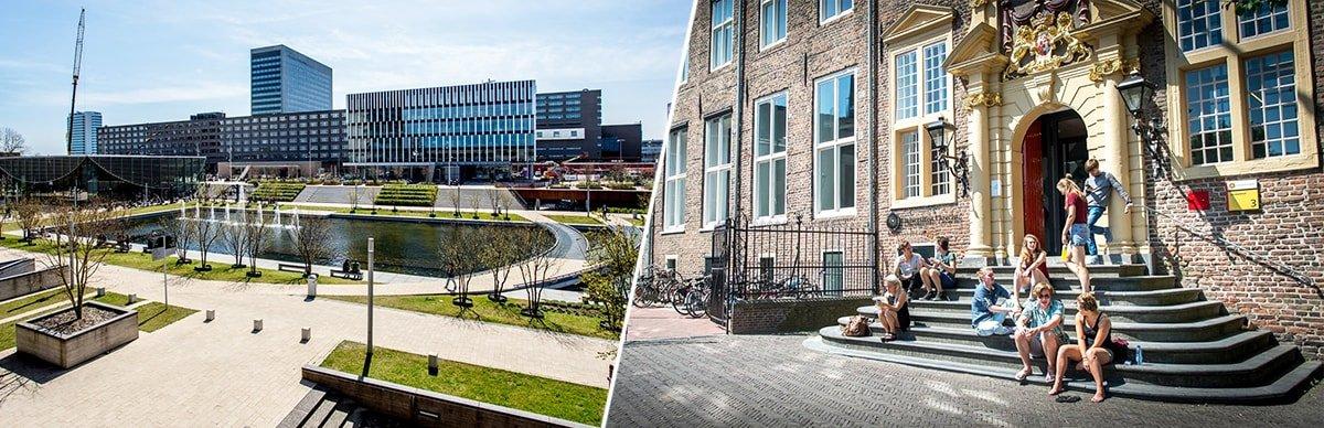 стоимость учебы в Голландии