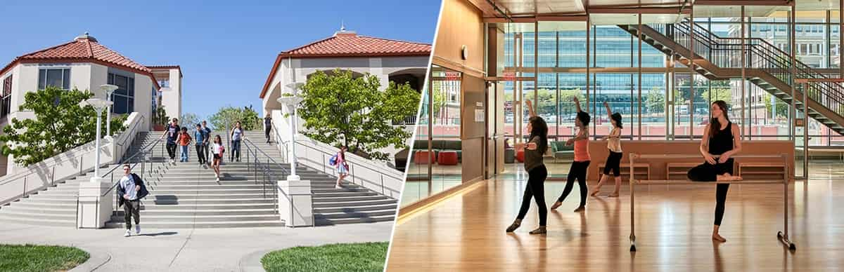 Университеты США | The Academic Advisor