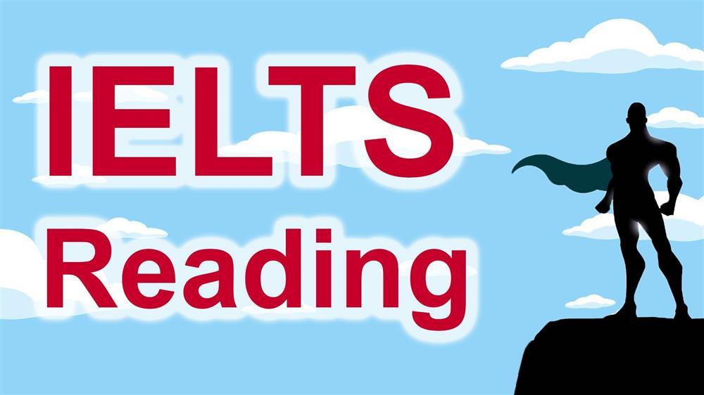 reading IELTS